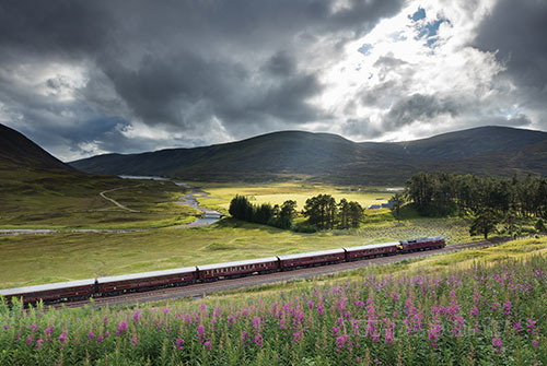 Train_0705_1.jpg